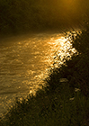Dreamscapes Gallery - A River of Molten Gold at Dusk